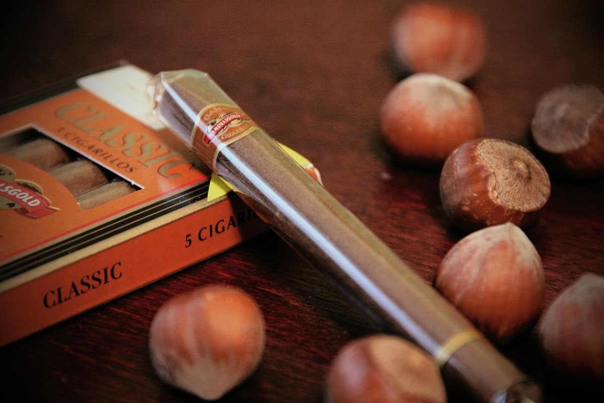 5 Questions to Ask When Buying Your First Cigar