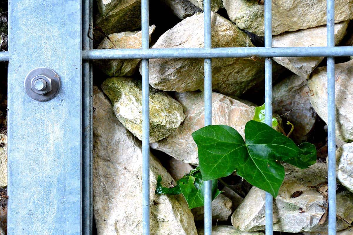 4 Ways to Use Gabion